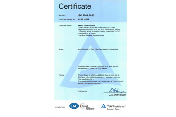 ISO9001 Yearly Audit 2020